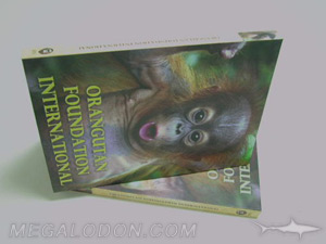 dvd hardbound book packaging tall height
